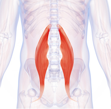 Symptoms of Tight Hip Flexors